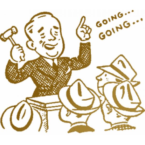 Biểu phí đấu giá tài sản - Công ty Đấu giá Đại Dương Long